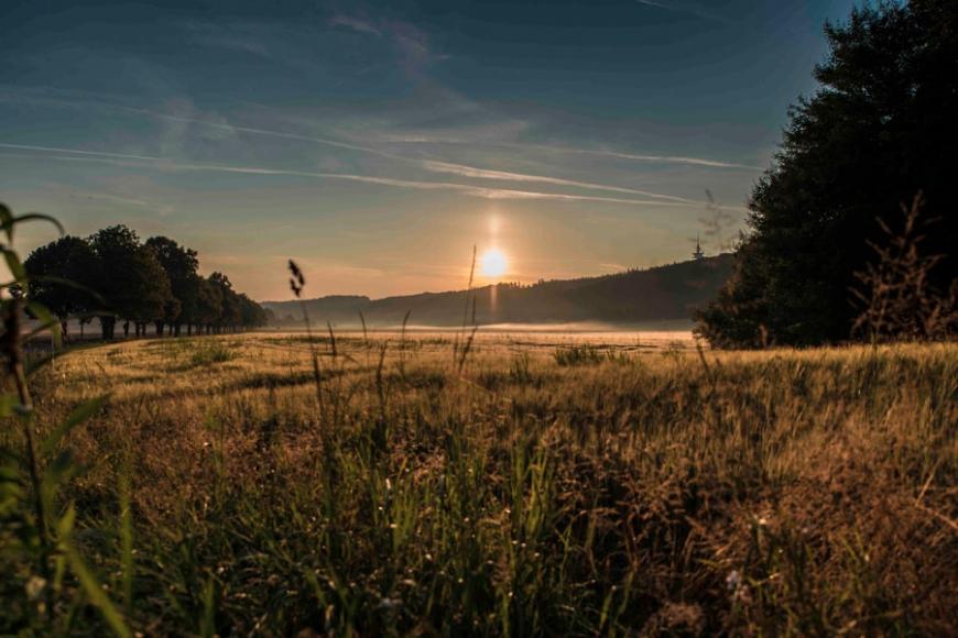 aufgehende Sonne über ein nebliges Feld