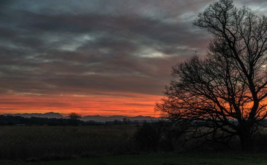 Sonnenuntergang zur Weihnachtszeit